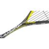 Kép 2/3 - Tecnifibre Carboflex 125 Heritage squash ütő (részlet)