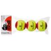 Kép 2/2 - Tecnifibre My New Ball (3 db/zacskó) teniszlabda