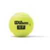 Kép 2/3 - Wilson RF Legacy teniszlabda